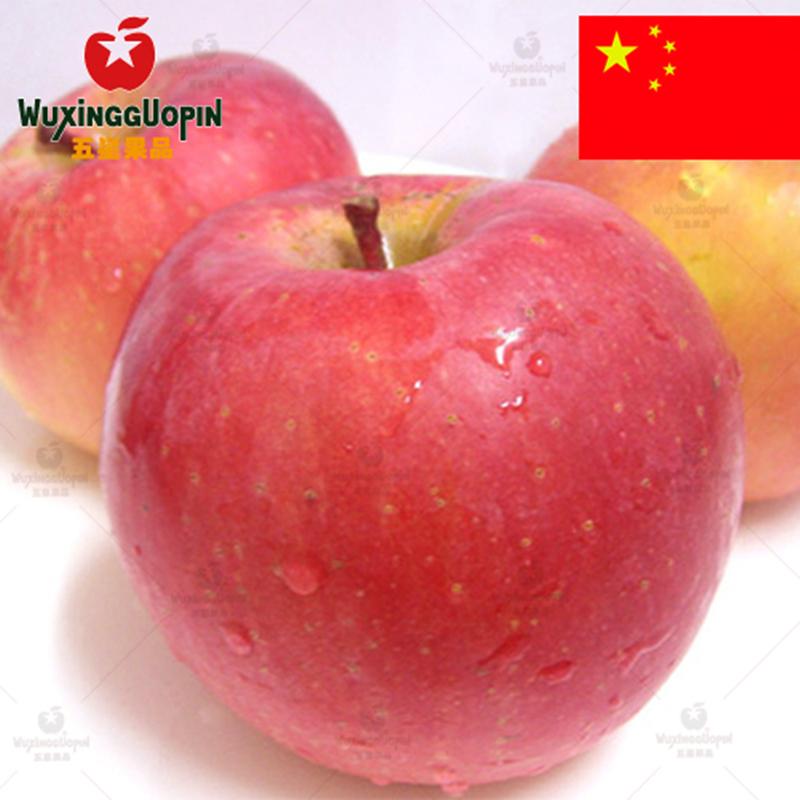 【五星果品】新疆产地 阿克苏冰糖心苹果5斤装