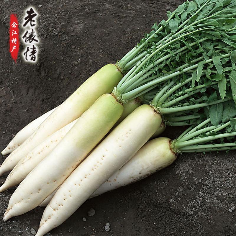 余江特产 新鲜现挖自种 白萝卜 8斤装 限时供应 仅需9.9元