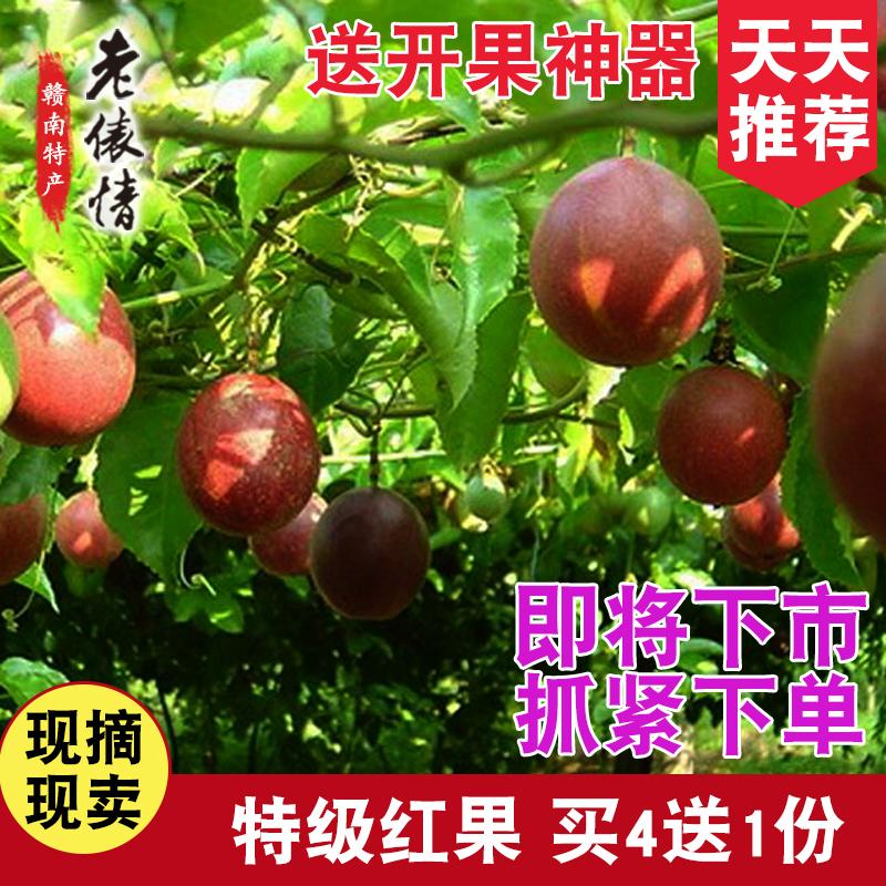 【天天推荐】新鲜百香果9.9元1斤装 产地于都 ,买4送1再送开果器