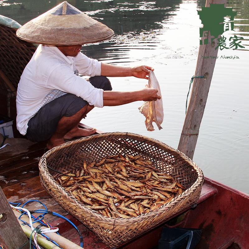 丹青农家湖南特产湘西农家自制火焙鱼 野生河鱼水产干货 小干鱼 鱼干