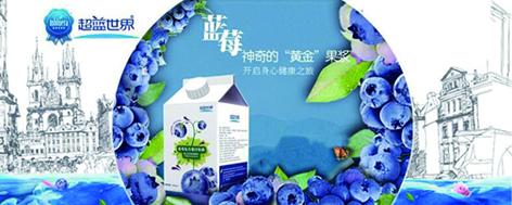 连云港 农家自产 超蓝世界50%蓝莓复合果汁1000ml*4包装